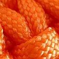 oranžová_